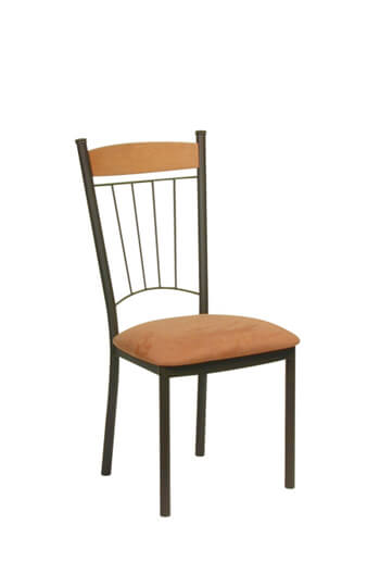 Trica Allan Transitional Dining Chair